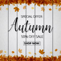 Autumn sale poster or banner for shopping with maple leaf and d
