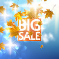 Autumn Sale Poster With Gold M...