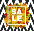 Vector autumn sale with falling leaves pattern