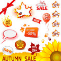 Autumn sale set Royalty Free Stock Photos
