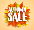 Autumn sale text vector banner with colorful seasonal fall leaves in orange background Royalty Free Stock Photo