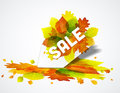 Autumn sale vector background with colorful leaves Stock Photos