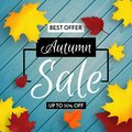Autumn sale vector poster or flyer with colorful autumn leaves and blue wooden background. Fall design Sale banner. Royalty Free Stock Photo