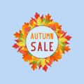Autumn sales banner with colorful fall leaves on blue background Royalty Free Stock Photo