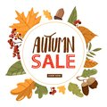 Autumn sales banner template. Various types of leafs, rowan and acorns.