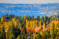 Autumn scenary @ Bellevue Washington Royalty Free Stock Images