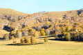 Autumn scene in the grassland Stock Images