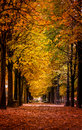 Autumn scene from a park in Paris, France. Royalty Free Stock Photo
