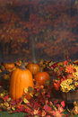Autumn scene with pumpkins and colored leaves Royalty Free Stock Images