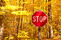 Autumn scene with road and stop sign Royalty Free Stock Photo