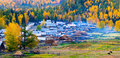 Autumn scenery, Baihaba village, Xinjiang China Royalty Free Stock Image