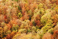 Autumn scenery colorful forest in bosnia and herzegovina Royalty Free Stock Photos