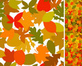 Autumn seamless Stock Images