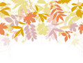 Autumn seamless background. Royalty Free Stock Image