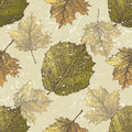 Autumn seamless hand drawn ornament with leaves Royalty Free Stock Images