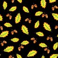 Oak leaves and nuts