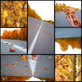 Autumn season beautiful, collage Stock Images