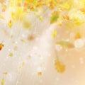 Autumn season blurred leaves. EPS 10 vector