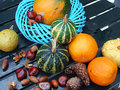 Autumn seasonal vegetables  Royalty Free Stock Photos