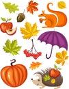 Autumn set Stock Photos