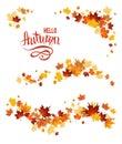 Autumn set of maple leaves