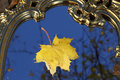 Autumn sheet of a maple on a mirror in sky reflexion Royalty Free Stock Photo