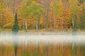 Autumn shoreline alberta lake Fotografia Stock
