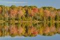 Autumn shoreline seneca lake Immagine Stock Libera da Diritti