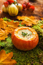Autumn soup with pumpkin roasted parmesan Royalty Free Stock Photography