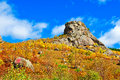 The autumn south peak of lama mountain photo taken in chinas inner mongolia autonomous region hulun buir city yakeshi bahrain town Stock Image