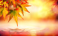 Autumn spa background with red leaves Royalty Free Stock Photo
