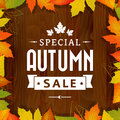 Autumn special sale vintage typography poster on wood background layered Royalty Free Stock Photography