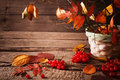 Autumn still life beautiful on wooden background Royalty Free Stock Image