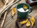 Autumn Still-life. Enameled Mug, Old Camera, Notepad, Pencil