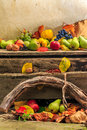 Autumn still life with fruit in leaves on board and vines backgr autumnal apples pears grapes nuts foliage background Royalty Free Stock Images