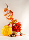 Autumn still life with a snowball Royalty Free Stock Photography