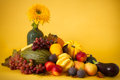 Autumn still life squashes sweet corn fruits sunflower yellow background Stock Photography