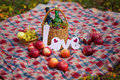 Autumn still life in the woods picnic basket with apples grape wine Royalty Free Stock Photos