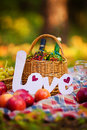 Autumn still life in the woods picnic basket with apples grape wine Stock Images