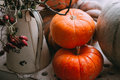 Autumn stillife with pumpkins Royalty Free Stock Photo