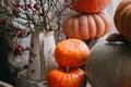 Autumn stillife with pumpkins Royalty Free Stock Photo