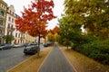 Autumn Street.
