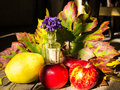 Autumn table arrangement Royalty Free Stock Photo