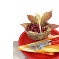 Autumn table setting Royalty Free Stock Image