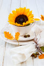 Autumn table setting Fotografia de Stock Royalty Free