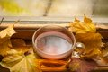 Autumn tea Fotografia de Stock Royalty Free
