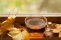 Autumn tea Fotos de archivo libres de regalías