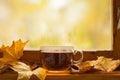 Autumn tea Fotografía de archivo libre de regalías