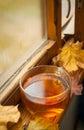 Autumn tea Immagini Stock Libere da Diritti