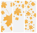 Autumn template flyer or invitation vector eps Royalty Free Stock Photos